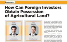 How-Can-Foreign-Investors-Obtain-Possession-of-Agricultural-Land-DLF-lawyers-Ukraine